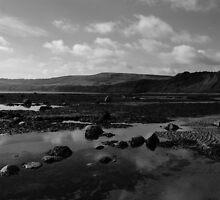 Looking Towards Ravenscar by Mark Dobson