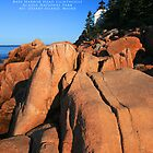 Acadia National Park by Christopher  Malatesta