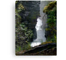 Athabaska Gorge Canvas Print