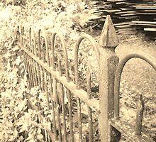 Old Iron Fence by Seth LaGrange