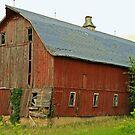 ....another barn in Dunn County, Wisconsin... by Lynne Prestebak