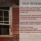 OLD WINDOW by linmarie