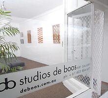 Studios de Boos - Art Gallery by Nicholas de Boos