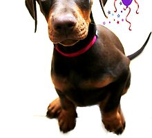 Dolly Doberman Birthday by Ladymoose