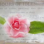 Hours of Idleness: A Flower in Pink by Susan Werby