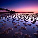 Patterns in Nature by Garry Schlatter