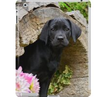 Lab puppy playing hide and seek iPad Case/Skin