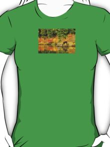 Tuti Fruti Colors and Eye Candy Reflections T-Shirt