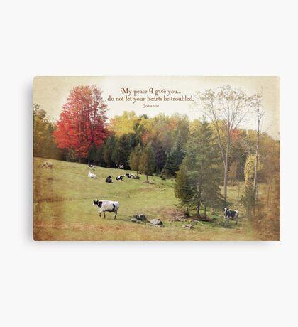 Peaceful Cows Metal Print