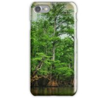 River Beauty iPhone Case/Skin