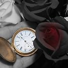 Timeless by Maree Toogood
