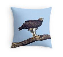 Martial Eagle Throw Pillow