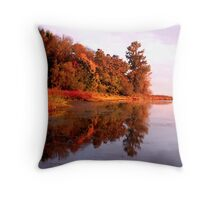 """View at First Light"" Throw Pillow"