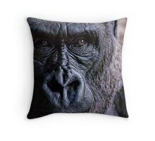 The Window To Her Soul Throw Pillow