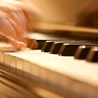THE PIANIST'S FINGERS by elatan