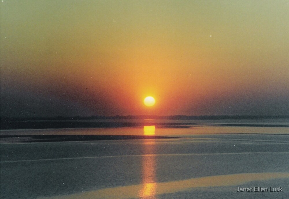 Orange Sunset by Janet Ellen Lusk