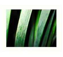 green stalks Art Print