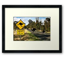Kangaroos Ahead Framed Print