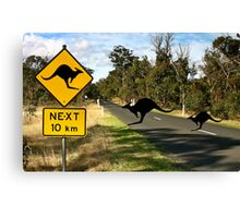 Kangaroos Ahead Canvas Print
