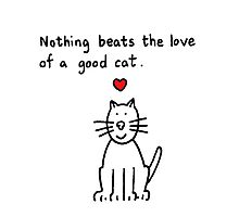 Nothing beats the love of a good cat. Photographic Print