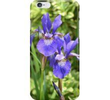 Purple Lent A Williamson Bearded Iris Couple iPhone Case/Skin