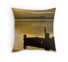 Cormorant in the afernoon sun Throw Pillow