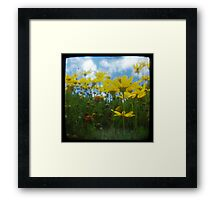 To chase away the rain Framed Print