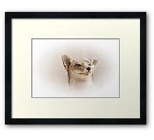 mister fox with monocle Framed Print