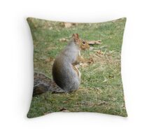 Nuts, Nuts, I NEED MORE!!!! Throw Pillow