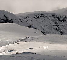 Ridge by Danny Schaftlein