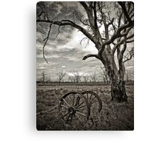 Dying Out Canvas Print