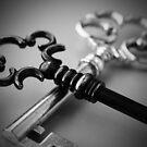 Bronze & Silver Keys Macro by MBWright88