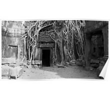 Roots and the Doorway Poster