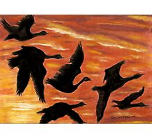 Sky Dancers Photographic Print