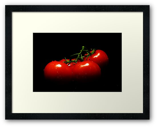 Portrait of tomatoes  by Earl McCall