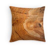 Painted Cliffs Throw Pillow