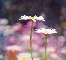 pastel duet by Aimelle