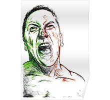 Hulk Transformation  Poster