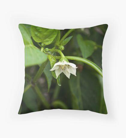 Capsicum Flower Throw Pillow