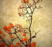Autumn Branch by Tara  Turner