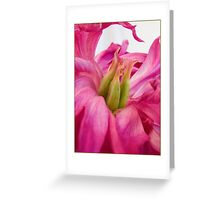 Peony Can Can Card Greeting Card
