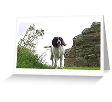 Teal at Norham Castle Greeting Card