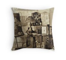 Apothecary Display Throw Pillow
