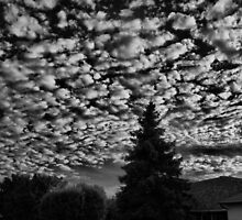Sky Over Home by lisabella