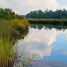Rainbow Reflection by Jonicool