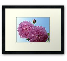 pretty in pink- support breast cancer research Framed Print