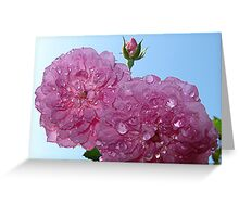 pretty in pink- support breast cancer research Greeting Card