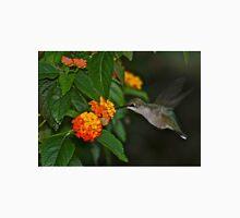 low light hummingbird Unisex T-Shirt