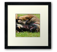 puppy games Framed Print