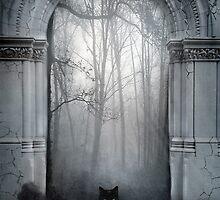The Gatekeeper by ravenstone
